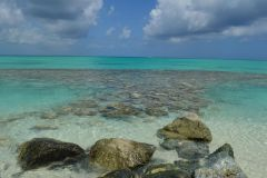 Pelican beach rocks
